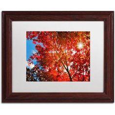 Trademark Fine Art Month Sun Canvas Art by Philippe Sainte-Laudy, White Matte, Wood Frame, Size: 11 x 14