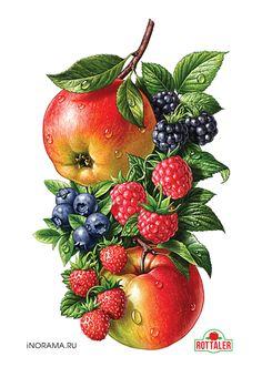 http://illustrators.ru/illustrations/691602_original.jpg