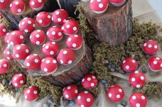 Mushroom Cupcakes for a Forest Party