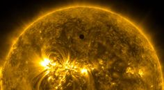 Venus in silhouette, seen between the Earth and Sun, from NASA's orbiting Solar Dynamics Observatory, on June 5, 2012.