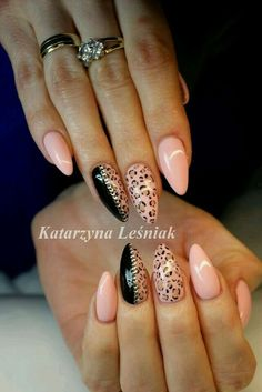 leopard, nails, and stiletto image