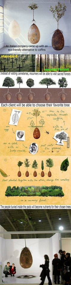 This is A-MA-ZING !!!  When you die, you are placed inside an egg-shaped coffin made of biodegradable materials PLUS a sapling or seed of a tree of your choice.  An area is then selected where these 'eggs' can be buried and over time a forrest would grow.  Frickin' awesome