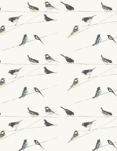 Garden Birds - Louise Body Wallpapers - A fun design with horizontal crisscrossed lines and photo prints of gardens birds in charcoal grey, coloured with soft candy colours on a soft stone background. Also available on green. Please request a sample for true colour match.