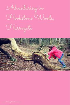 Visiting the woods in #Harrogate at Hookstone with kids - what fun!