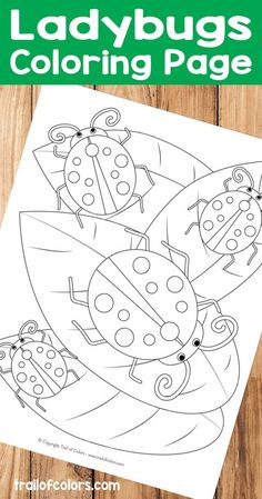 12 Best Summer Coloring Page Images On Pinterest