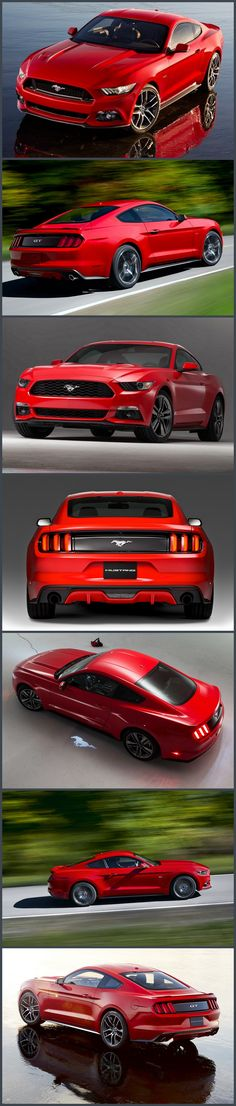 2015 Mustang GT Fastback designed by Aston martin. More sport then muscle. I always wanted a red or pink mustang!