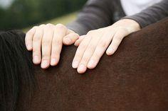 Mit den richtigen Übungen, reichen bereits wenige Minuten täglich, um die Rückengesundheit hres Pferde nachhaltig zu verbessern. © JM Fotografie