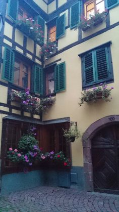 Ribeauville france alsace