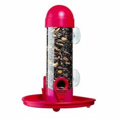 1 Lb. Wildbird Window Bird Feeder