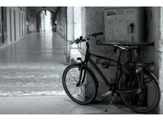 Uno sguardo su Senigallia : una bici lungo i Portici Ercolani .Marche, Italia . ( FOTO di Roberto Olivetti) .