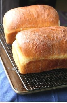 This is the best bread recipe I have ever tried. It is my new go to bread recipe. This is the best bread recipe I have ever tried. It is my new go to bread recipe. This is the best bread recipe I have ever tried. It is my new go to bread recipe. Easy Bread Recipes, Cooking Recipes, Cooking Tips, White Bread Recipes, White Bread Machine Recipes, Amish Recipes, French Recipes, Bakery Recipes, Cooking Classes