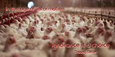 In the age of information, ignorance is a choice. ~ Donny Miller