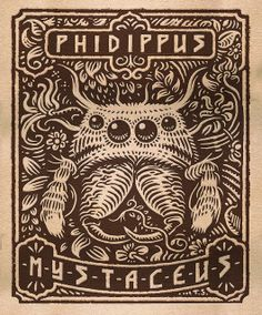 Phidippus mystaceus stamp concept by Thomas Shahan 2 | Flickr - Photo Sharing!