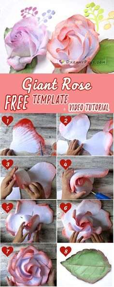 Free giant rose template and tutorial, paper flower, paper rose, #paperrose #paperflower
