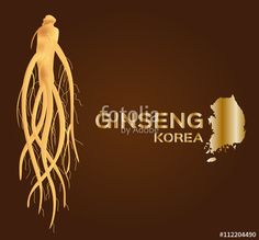 """Download the royalty-free vector """"ginseng vector , ginseng of Korea , ancient traditional medicine """" designed by gritsalak at the lowest price on Fotolia.com. Browse our cheap image bank online to find the perfect stock vector for your marketing projects!"""