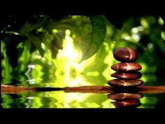RELAXING NATURE SOUNDS, BIRDS SINGING, WATER SOUNDS, MEDITATION SOUNDS, ...