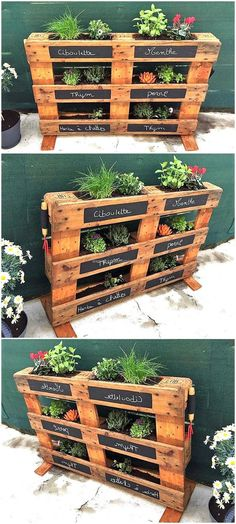 Plans of Woodworking Diy Projects - Creative Beginners Friendly Woodworking DIY Plans At Your Fingertips With Project Ideas, Tips and Tricks Get A Lifetime Of Project Ideas & Inspiration! Pallet Garden Ideas Diy, Pallets Garden, Diy Pallet Projects, Pallet Gardening, Organic Gardening, Garden Ideas With Pallets, Creative Garden Ideas, Vertical Pallet Garden, Palette Projects