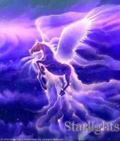 Bella Sara, Pegasus