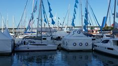 The Catamaran Company Lagoon, Gemibi, Strictly Sail Miami caroline.laviolette@catamarans.com