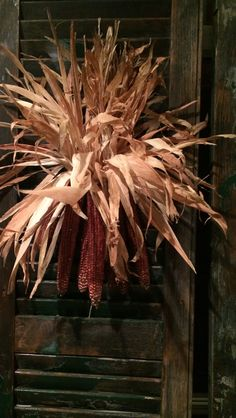 Usually I do Indian Corn in groups of three, might be an idea to tie in groups of five and hang