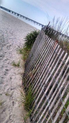 Stinky Beach. West Ocean City, MD