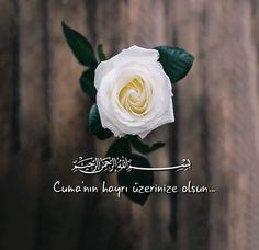 Jumma Mubarak Quotes, Blessed Friday, Islamic Quotes Wallpaper, Islam Facts, Allah Islam, Islamic Art, Instagram Story, Religion, Rose