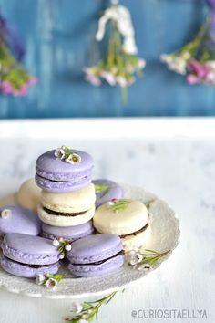 Curiositaellya: Lavender & Ginger Macarons