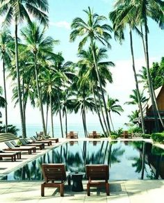 travel poolside tropical holiday