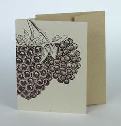 Blackberry Cards – 8 Pack / Hand-printed Letterpress / Pioneer-House.com