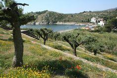 Port Lligat in spring