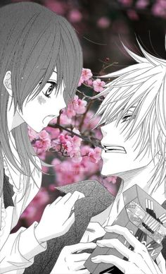 #Anime #Collage #Shoujo #Manga #Couple #Sakura #Pocky  - dengeki daisy