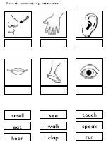 LessonSense.com - worksheets and downloads related to the theme Body - Lesson plans, crafts, ideas, worksheets and downloadable materials for kindergarten and primary / elementary school teachers