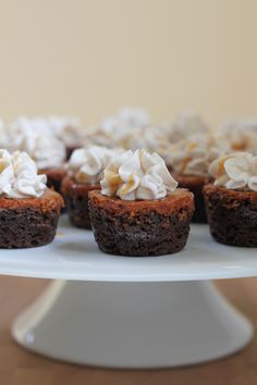 Mini Pumpkin Pie Gingersnap Cookie Cups... Mini pumpkin pies baked into a fabulous gingersnap cookie cup and topped with pumpkin pie spice whipped cream! These bite-sized desserts are the perfect way to end your Thanksgiving dinner!