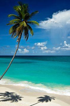 ˚Beautiful beach at Bottom Bay, Barbados