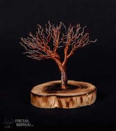 Flame patina wire tree sculpture on burnt wood base by Metal Bonsai MG266