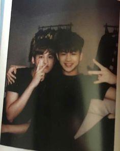 Ma adorkable aqua boys 💋🐝🐝 Kim Jinhwan, Chanwoo Ikon, Ikon Songs, Ikon Kpop, Pop Bands, Yg Entertainment, Kpop Boy, Boyfriend Material, Monsta X