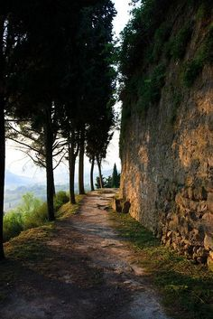 Everybody wants to visit the Toscana, Italy. The Tuscany boasts a proud heritage. left a striking legacy in every aspect of life. Places To Travel, Places To See, Places Around The World, Around The Worlds, Tuscany Italy, Italy Italy, Sorrento Italy, Capri Italy, Naples Italy