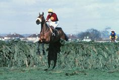 Red Rum winning the 1977 Grand National. Thrice winner of the Grand National.