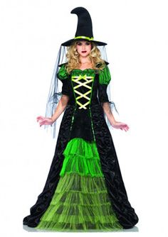 Adult Storybook Witch Costume
