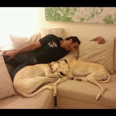---Geez, Fazza, you tired out another one----@warsaan11
