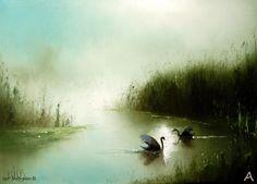 Swan Morning by Igor Medvedev