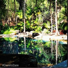 """""""☀️Who would like to escape to this perfect tropical paradise this summer! 