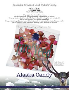 Alaska Fireweed Vodka Infused Rhubarb Candy. Not for kids or critters.