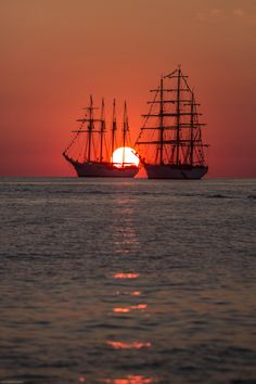 Tall ships on the Bay, at sunset.