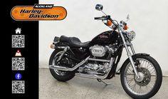 1999 HARLEY-DAVIDSON XL1200C in Black At Auckland Harley-Davidson,  New Zealand www.amps.co.nz