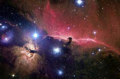der pferdekopfnebel im sternbild orion  | Foto: gendler