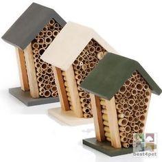 Casa Para Insectos-