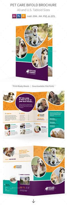 5+ puppy for sale flyer templates Essay Checklist