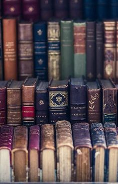 345 Best Old Books images in 2019 | Old books, Books, Book worms