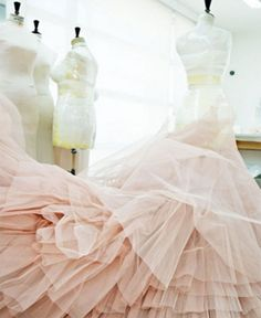 gah! i love all the colors, the light, and of course...the tulle! #pink